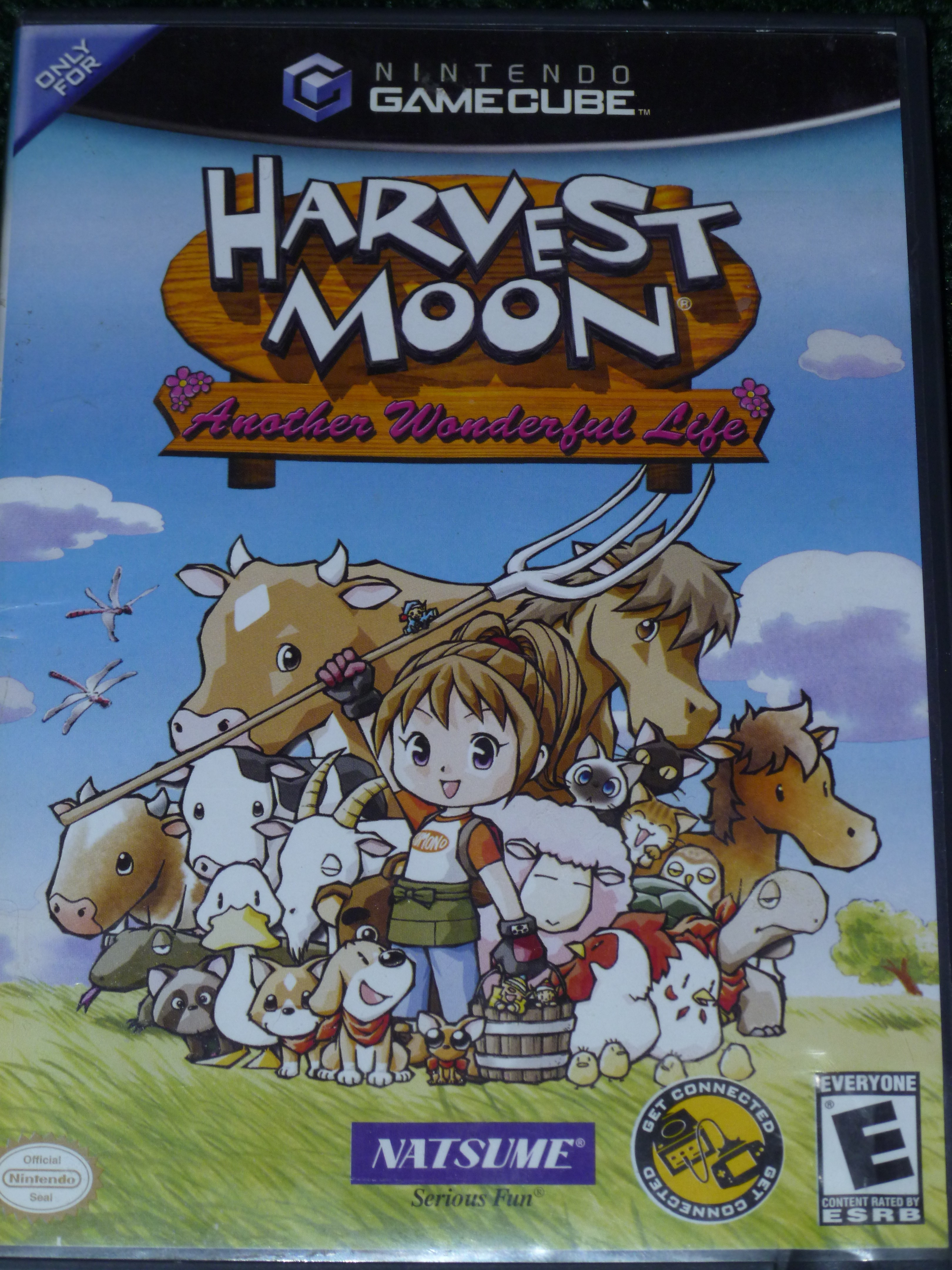 gamecube harvest moon coloring pages - photo #7