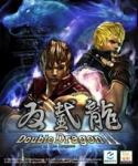 Double Dragon II Wander of the Dragons Cover