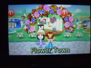 Flower Town Plaza