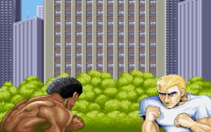 Street Fighter II Intro